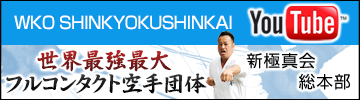 WKO SHINKYOKUSHINKAI YouTube 新極真会 総本部